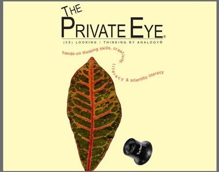 The Private Eye Brochure